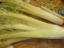 El cardo, una fuente vegetal de hierro y calcio
