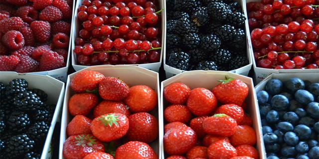 Frutas del bosque, antioxidantes naturales