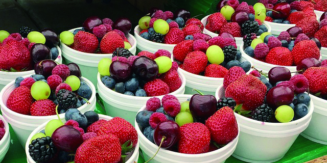 ¿Por qué madura la fruta recolectada?