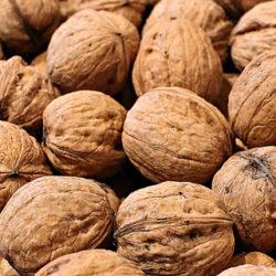 Las nueces pueden ser buenas para la salud intestinal y cardíaca