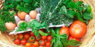 dieta_sostenibe