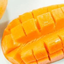 A manga, froita tropical por excelencia