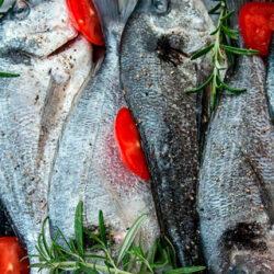 La dorada, un pescado blanco sabroso con proteínas de alta calidad