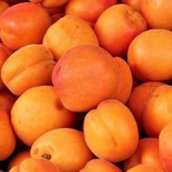 El Gobierno obligará a vender alimentos «feos» pero óptimos para evitar su desperdicio